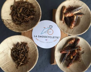 L'option dégustation d'insectes est disponible !