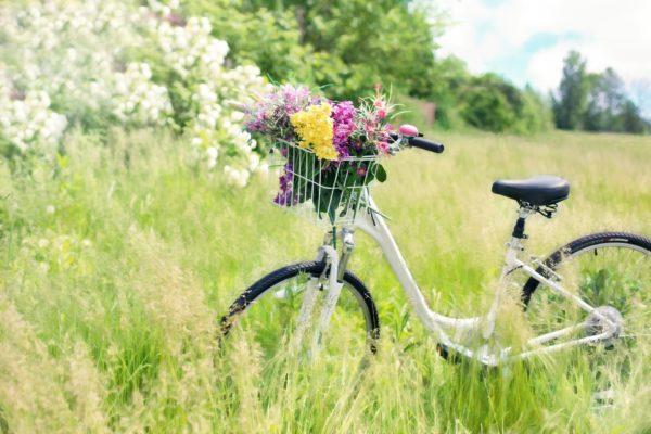 Un vélo fleuri au cœur d'un champs