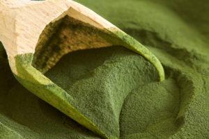 boissson-algue-comestible